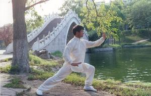 Stage tai chi chuan style Yang
