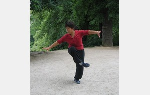 Stage tai chi chuan style Chen
